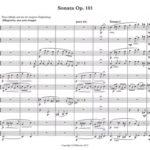 Beethoven sonate op.101