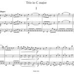 Mozart-hobotrio