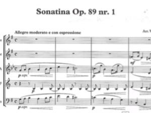 Reger op. 89-1
